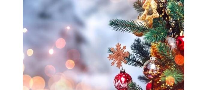 Tempistiche periodo natalizio 2020